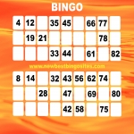 Top Ten Latest Bingo Sites in Acaster Selby 12