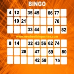 New Bingo Sites in Torfaen 12