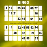 New Bingo Sites in Abbotstone 8