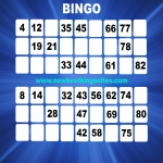 Top Ten Latest Bingo Sites in Aberffraw 8