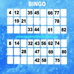 Free Bingo No Deposit Required in Altamuskin 2