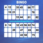Top Ten Latest Bingo Sites in Acaster Selby 5