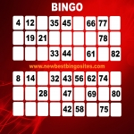 New Bingo Sites in Rhyd-y-fro 8